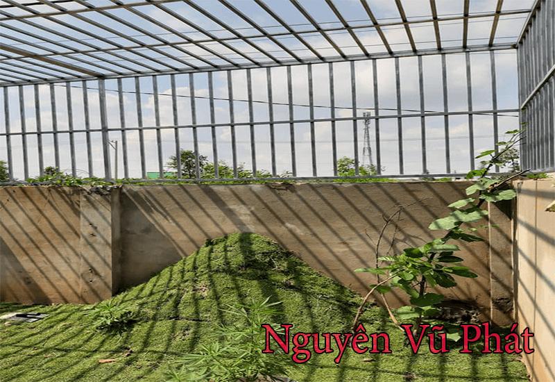 Lắp đặt khung bảo vệ sân sau của nhà vườn
